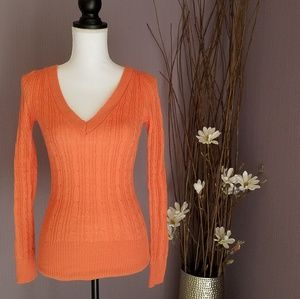 Sweaters - V-neck Fitted Sweater NWOT